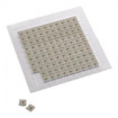 Gold Magnetic Ear Tack (100 pieces)