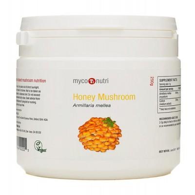 MycoNutri Honey Mushroom 250g powder (Armillaria mellea)