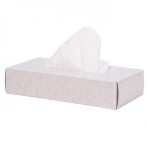 Facial Tissues - 2 Ply - White (Box Of 100)